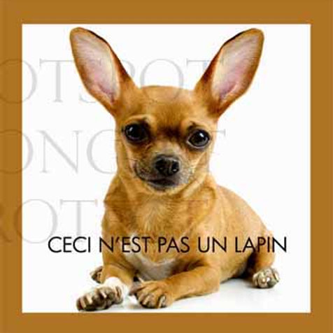 Lapin Chien