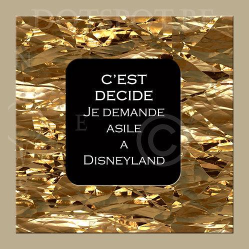 Asile Disneyland