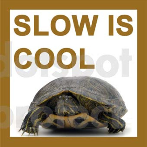 Slow Is Cool 3