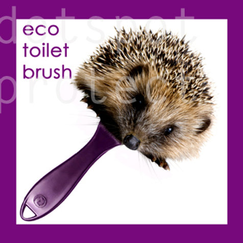 Eco Brush