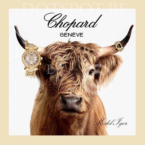 Chopard 2