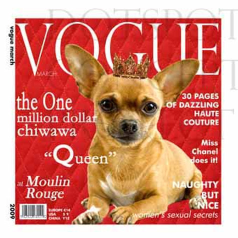 Vogue Chien