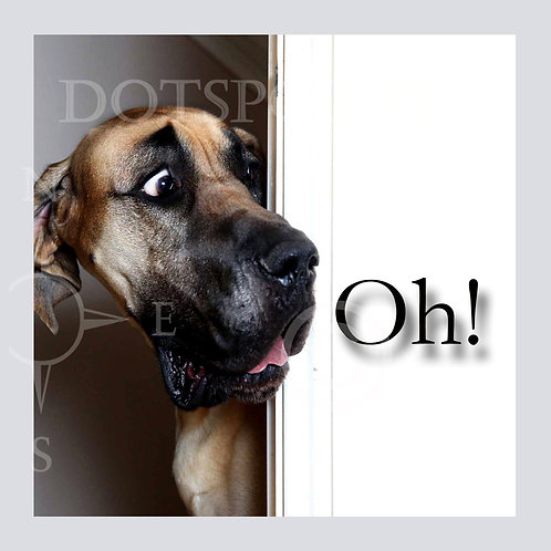 Dog Oh