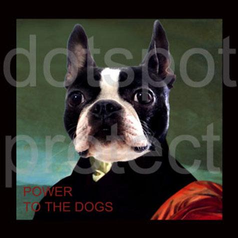 Power Bulldog