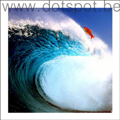 Océan Turquoise