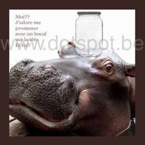 Hippo Bocale