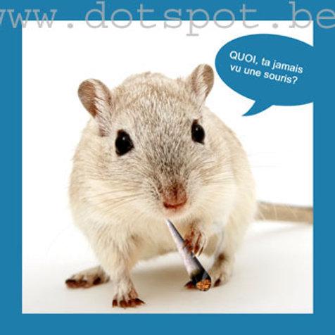 Smoker Souris