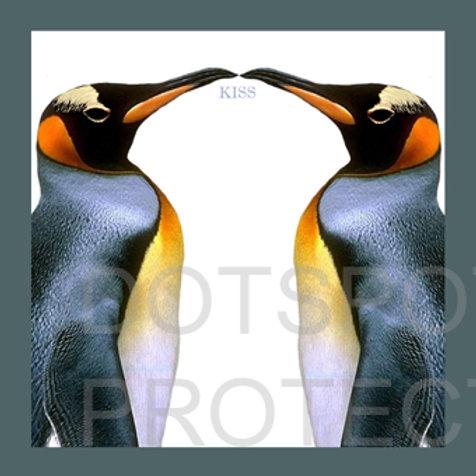Kiss Pingouins