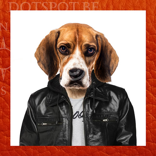 Dog Cuir 2