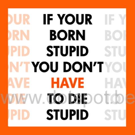Born Stupid