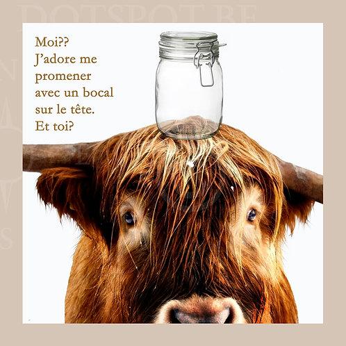 Bocal Vache