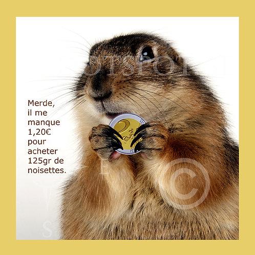 2 Euro Ecureuil