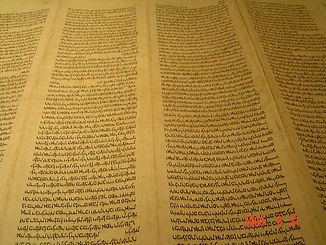 Hebrew_Sefer_Torah_Scroll.JPG