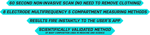 scanner-image-1.png