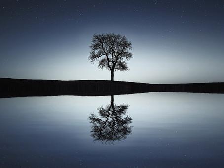 A Reflex Reflection
