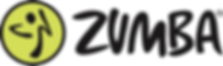 Z_P_Logo_T Small.png