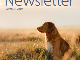 Summer Newsletter Out Now!