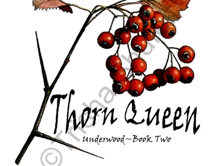 Thorn Apple Book Launch!!!