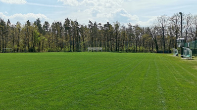 Waldstadion Oberpoyritz