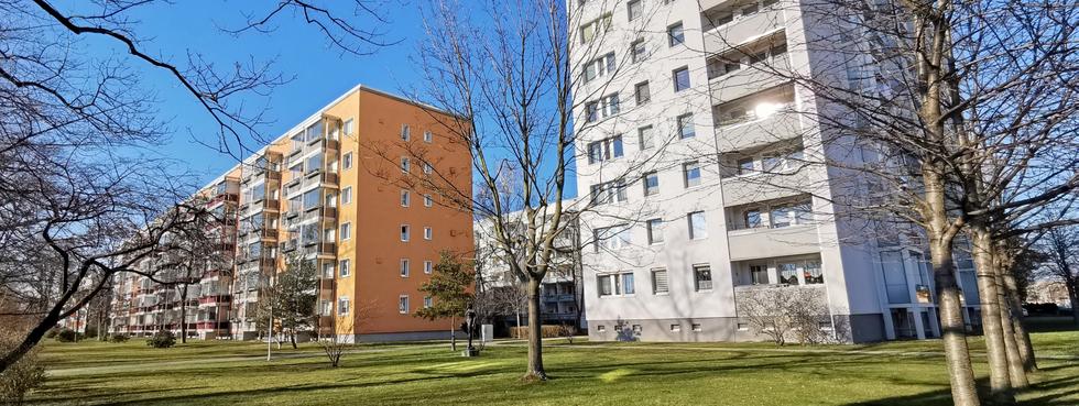 Sportplatz Stübelallee