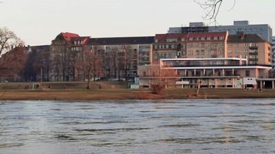 Elbwiese Johannstadt