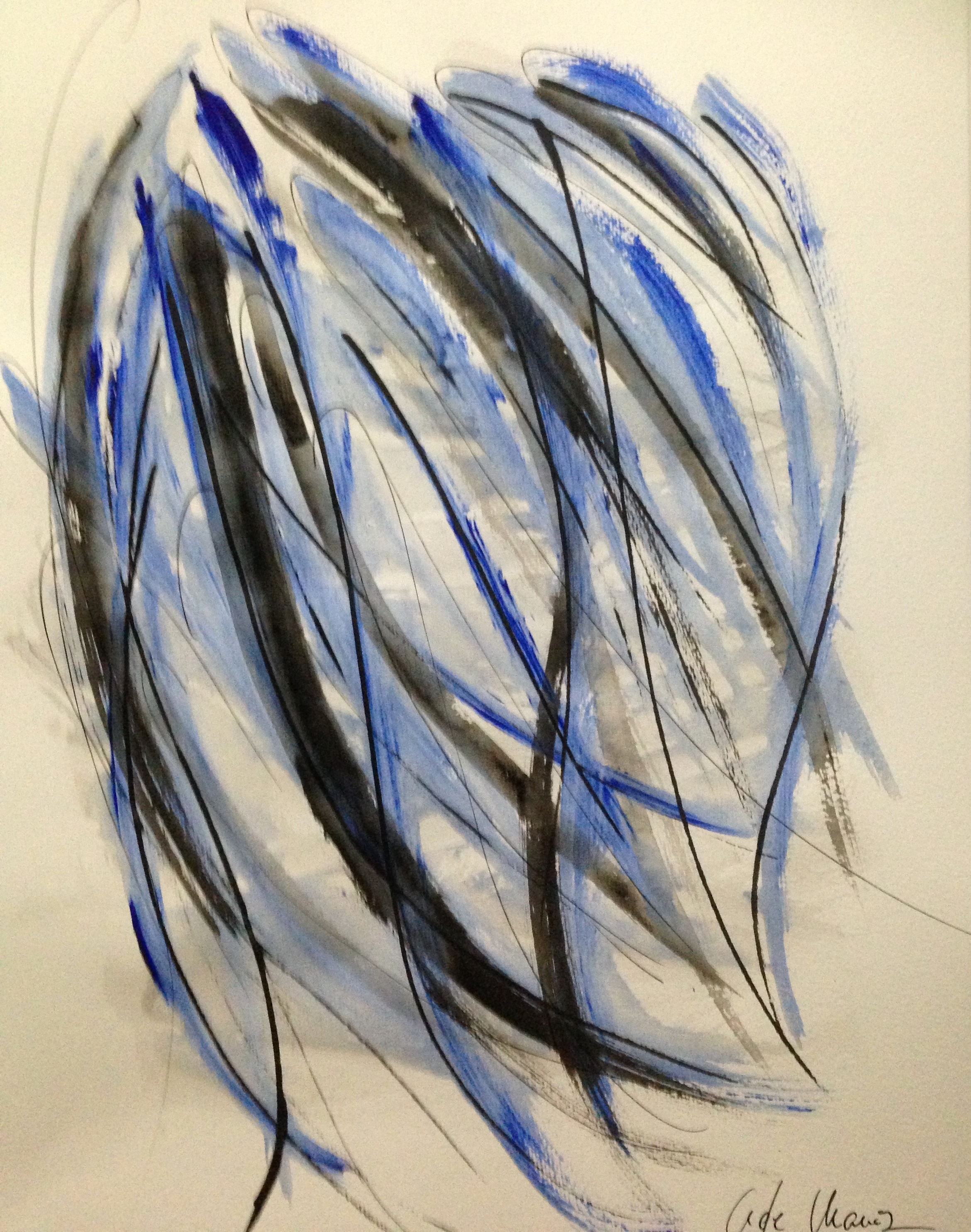 Eu-Kaliptos azul4