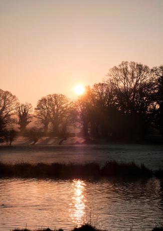 Swan Bridge Mornings.jpg