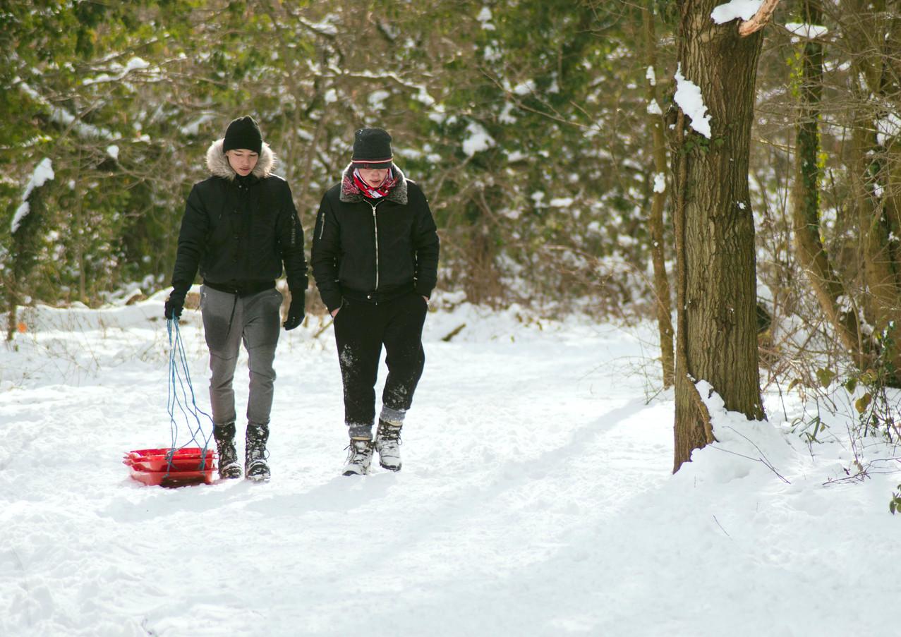 Kids In the snow.jpg
