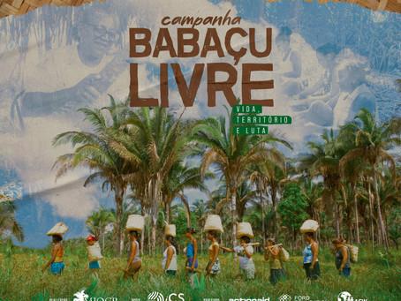 Lançamento da Campanha Babaçu Livre: Vida, Território e Luta