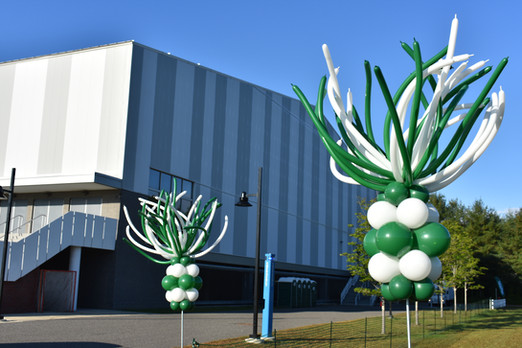 Graduation Balloon Firework Columns at Plymouth State University by Eye Candy Balloons