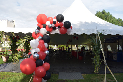Outdoor Picnic Organic Garland | BAE Corporate Events | Eye Candy Balloons