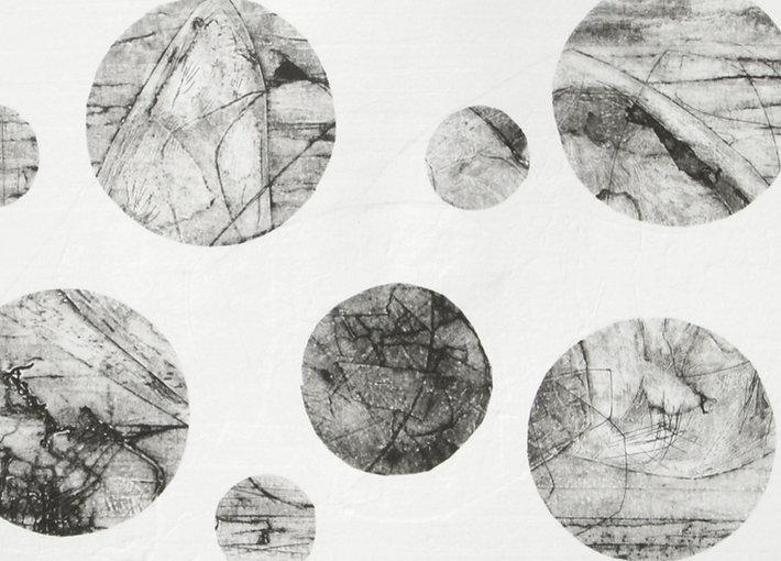 Janice-FlemingArtist-Circles_edited_edited.jpg