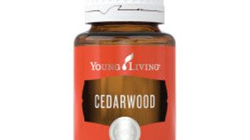 Cedarwood Essential Oil - YL