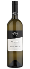 PINOT-BIANCO-IGT.png