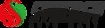 Synergy Auto Mart logo