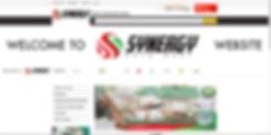 Synergy Automart Website