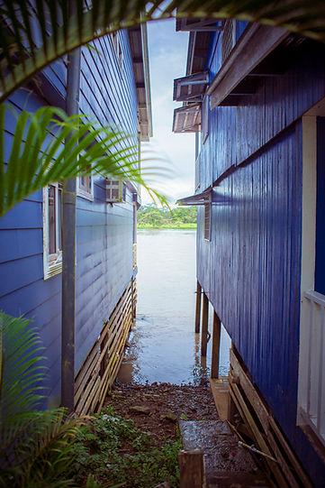 jungle_town_houses.jpg