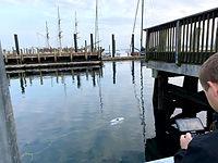 Marine Robotics Training - Blueye Pro