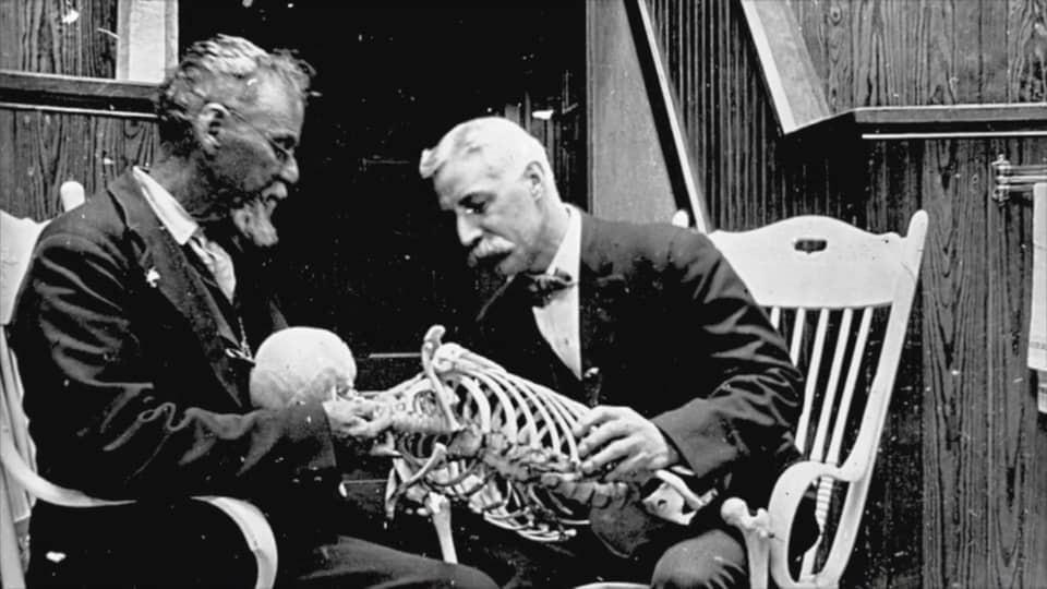 Andreww Taylor Still Anatomiste