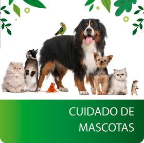 Cuidado Mascotas