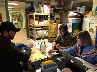 Tyler, Trevor, Mel - testing in the offi