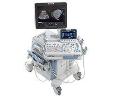 Ultraschall Digitale Röntgen Hund Tierarzt Stuttgart Botnang