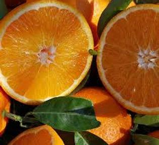 תפוז.jpg