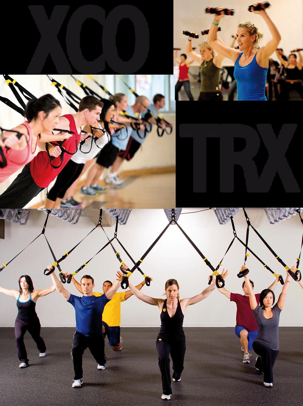Fitness, Gymnastik, Personaltraining, TRX, XOC, Bodystyling, Bootcamp, FIT MIT KIND, Pilates, Wirbelsäule, Black Roll, Faszientraining, Stretching, Yoga, Gröbenzell, Puchheim, Eichenau, Lochhausen, Untermenzing