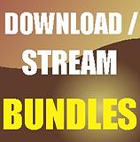 Bundle Download Icon