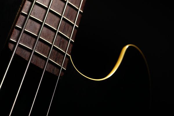 Beauty shot of black bass