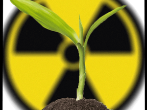 Radiation Mitigation on Mars Informs Fallout Farming on Earth