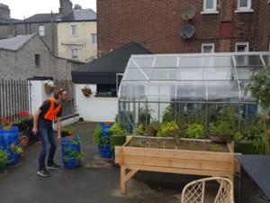 Urban Farming in Dublin, Ireland