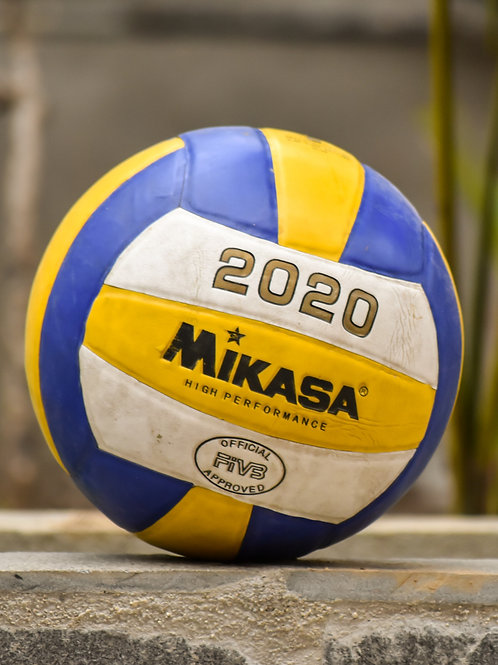 Adult Volleyball League, 2nd Session