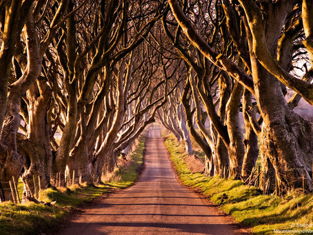 3 Reasons to Move to Northern Ireland